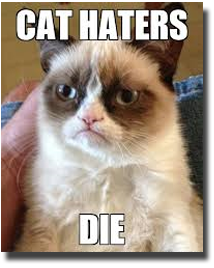 Cat - Cat Haters Die
